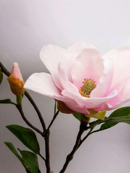 Искусственные растения ручной работы. Ярмарка Мастеров - ручная работа. Купить Цветы магнолии из полимерной глины. Handmade. магнолия, розовый