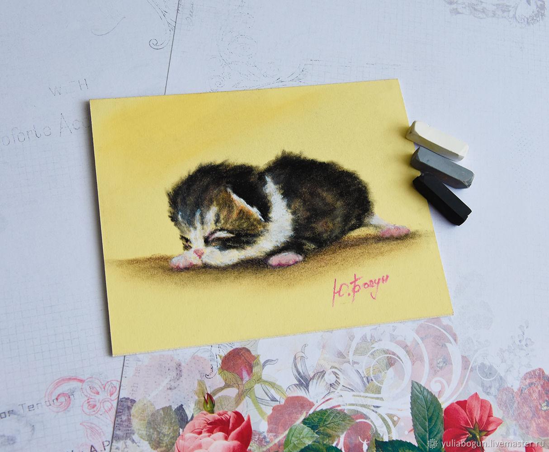 Pastel painting ' Kitten Fluff', Pictures, Belorechensk,  Фото №1
