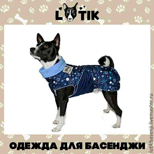 Одежда для собак, ручной работы. Ярмарка Мастеров - ручная работа. Купить Попона дождевик Космос. Handmade. Попона для басенджи, попона