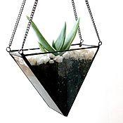 Цветы и флористика handmade. Livemaster - original item Florarium. Colgante interernyj florarium con aloe vera. Prisma. Handmade.