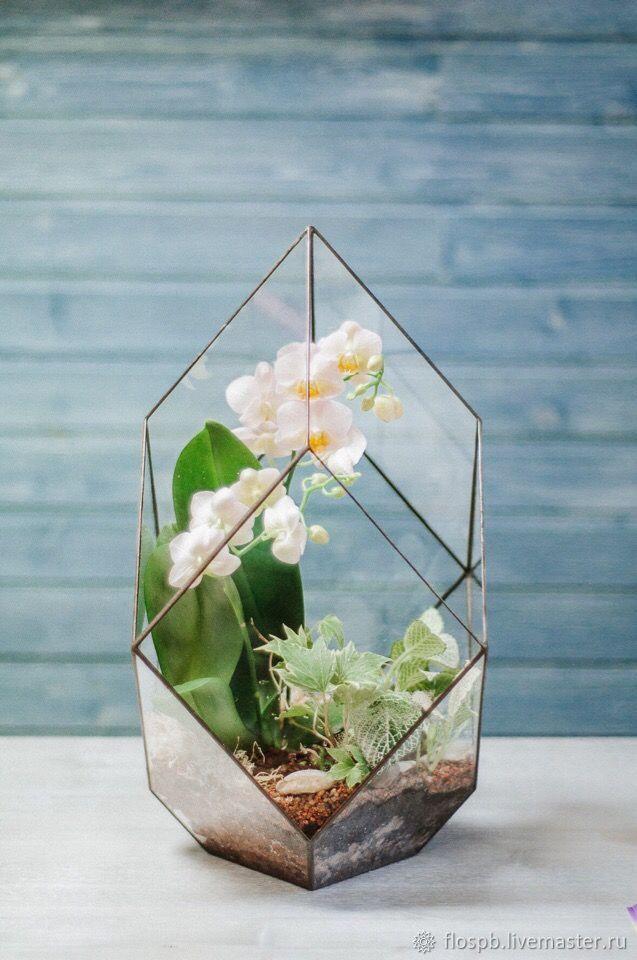 Флорариум с орхидеей, в форме Лотос, Флорариумы, Москва,  Фото №1