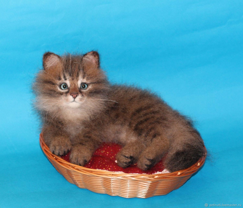 сибирский котёнок, Мягкие игрушки, Москва,  Фото №1