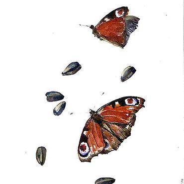 """Картины и панно ручной работы. Ярмарка Мастеров - ручная работа Акварель """"Бабочки и семечки"""". Handmade."""