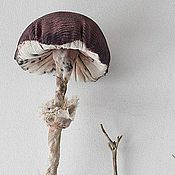 Куклы и игрушки handmade. Livemaster - original item Original mushroom. Interior toy.. Handmade.