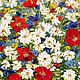 Oil painting of Daisies with poppies. Pictures. Zabaikalie. My Livemaster. Фото №5