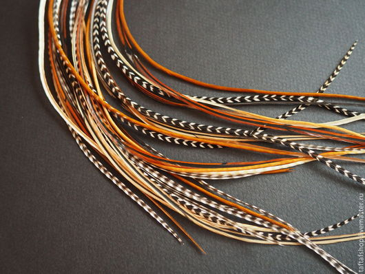 Перо, перья в волосы, натуральные перья, наращивание перьев, перья, перо, перья для волос, перья для наращивания.