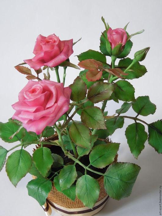 Цветы ручной работы. Ярмарка Мастеров - ручная работа. Купить Кустовая роза из холодного фарфора. Handmade. Фуксия, из холодного фарфора