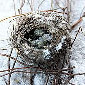 Фен-шуй и эзотерика ручной работы. Ярмарка Мастеров - ручная работа Смоляные благовония  Sweet nest. Handmade.