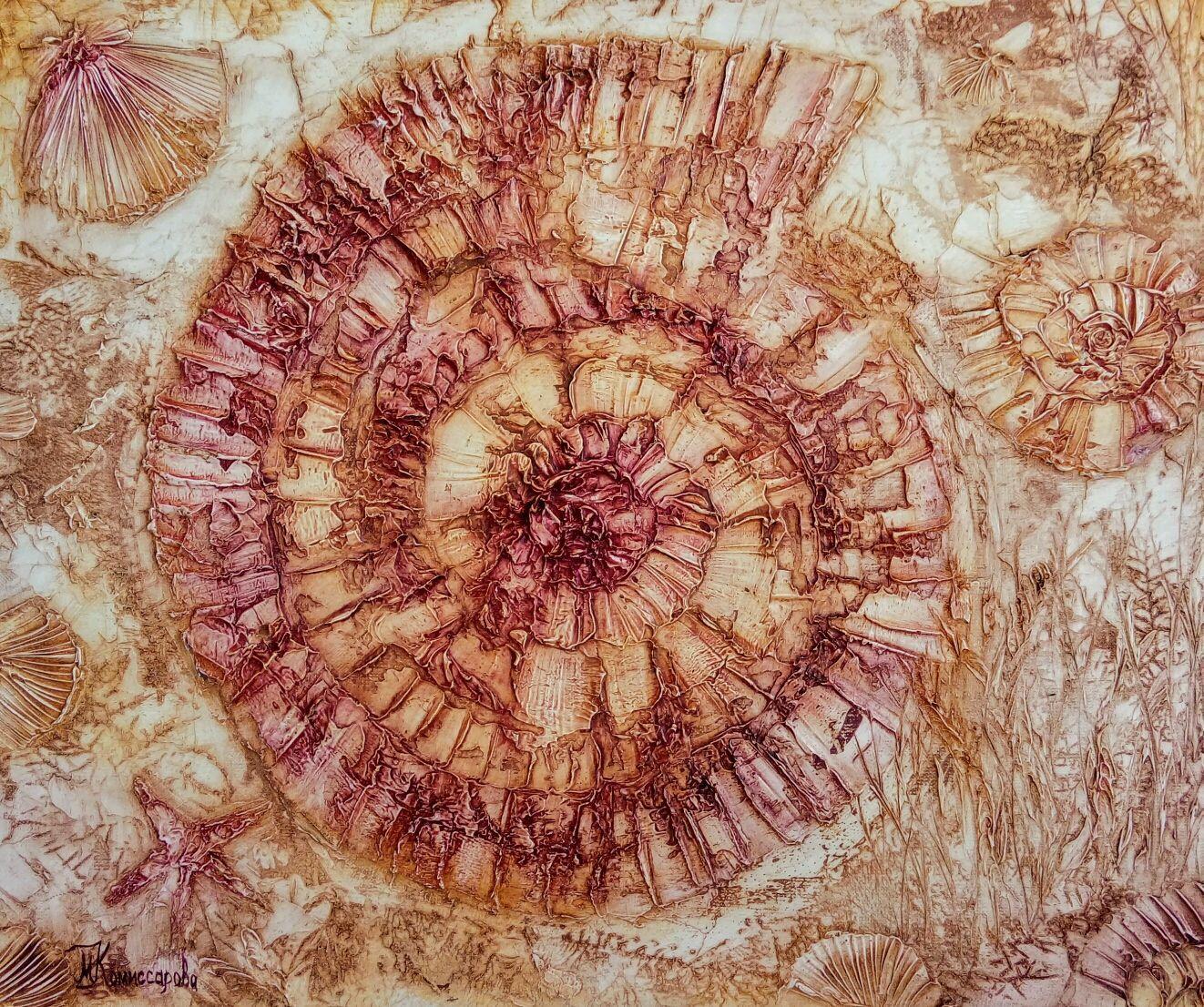 Pattern Ammonite, Pictures, Krasnodar,  Фото №1