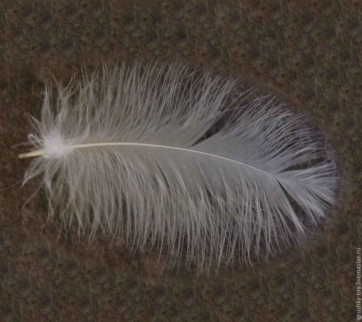 Как обработать перья для поделок