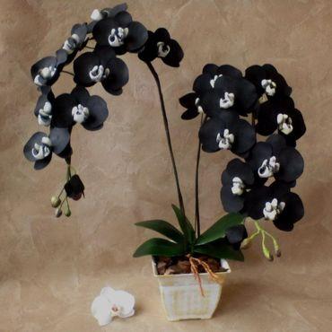 Цветы и флористика ручной работы. Ярмарка Мастеров - ручная работа Черная орхидея из фоамирана в кашпо. Handmade.