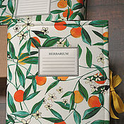 Канцелярские товары handmade. Livemaster - original item Album for a herbarium Oranges (A4, for 30 plants). Handmade.