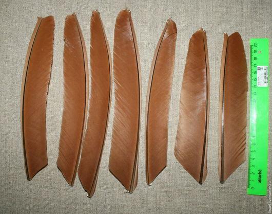 Другие виды рукоделия ручной работы. Ярмарка Мастеров - ручная работа. Купить Перо павлина красное. Handmade. Коричневый