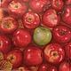 Плетеная корзина с яблоками и зеленое яблоко - 207 Салфетка для декупажа. Много яблок. Яблоки в корзине, зеленое яблоко Декупажная радостьрадость
