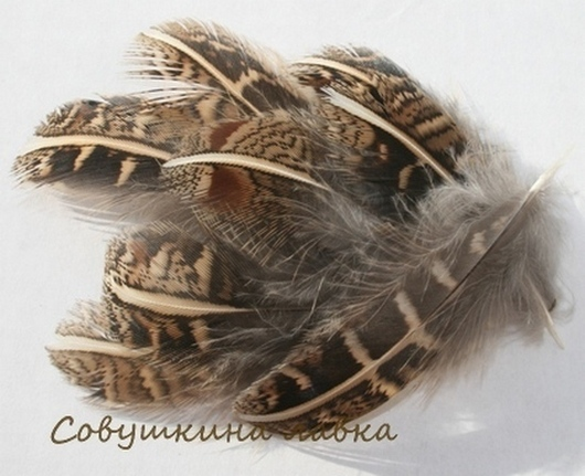 Другие виды рукоделия ручной работы. Ярмарка Мастеров - ручная работа. Купить Перья куропатки (разные). Handmade. Перья