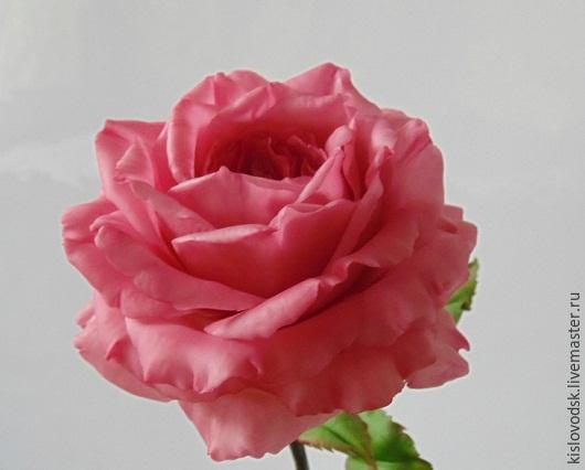 Цветы ручной работы. Ярмарка Мастеров - ручная работа. Купить Роза Настроение.Розовая, полноразмерная.Полимерная глина.. Handmade. Розовый
