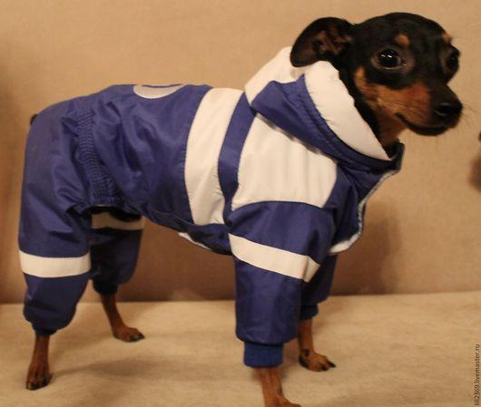 """Одежда для собак, ручной работы. Ярмарка Мастеров - ручная работа. Купить Комбинезон """" Фанат ДИНАМО"""". Handmade. Тёмно-синий"""