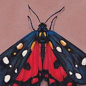 Картины и панно ручной работы. Ярмарка Мастеров - ручная работа картина пастелью Бабочка медведица. Handmade.