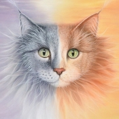 Картины и панно ручной работы. Ярмарка Мастеров - ручная работа Кошки - они такие.... Handmade.