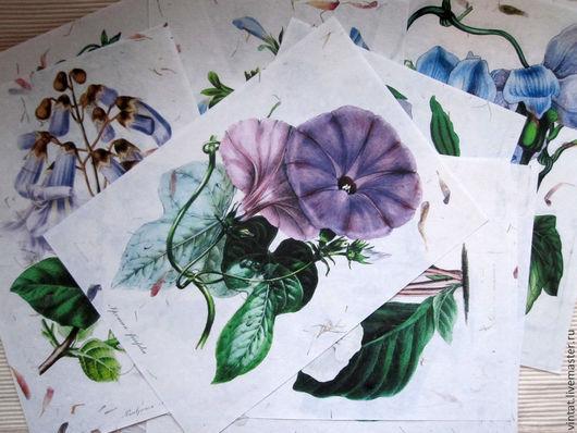 """Репродукции ручной работы. Ярмарка Мастеров - ручная работа. Купить """"Panteek-цветы"""" 2 - принт на бумаге  ручной работы. Handmade."""