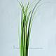 Материалы для флористики ручной работы. Р014 Ветка искусственной зелени, длина 80 см. Анастасия Flower-Stamens. Интернет-магазин Ярмарка Мастеров.