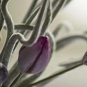 Цветы и флористика ручной работы. Ярмарка Мастеров - ручная работа Композиция Туманность. Handmade.