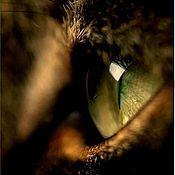 """Четки ручной работы. Ярмарка Мастеров - ручная работа Четки""""Глаз кошки мерцающий в темноте"""". Handmade."""
