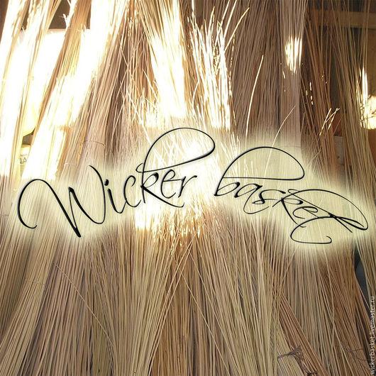 Другие виды рукоделия ручной работы. Ярмарка Мастеров - ручная работа. Купить Прут ивовый (лоза) для плетения до 20 см., в пучках по 100 шт.. Handmade.