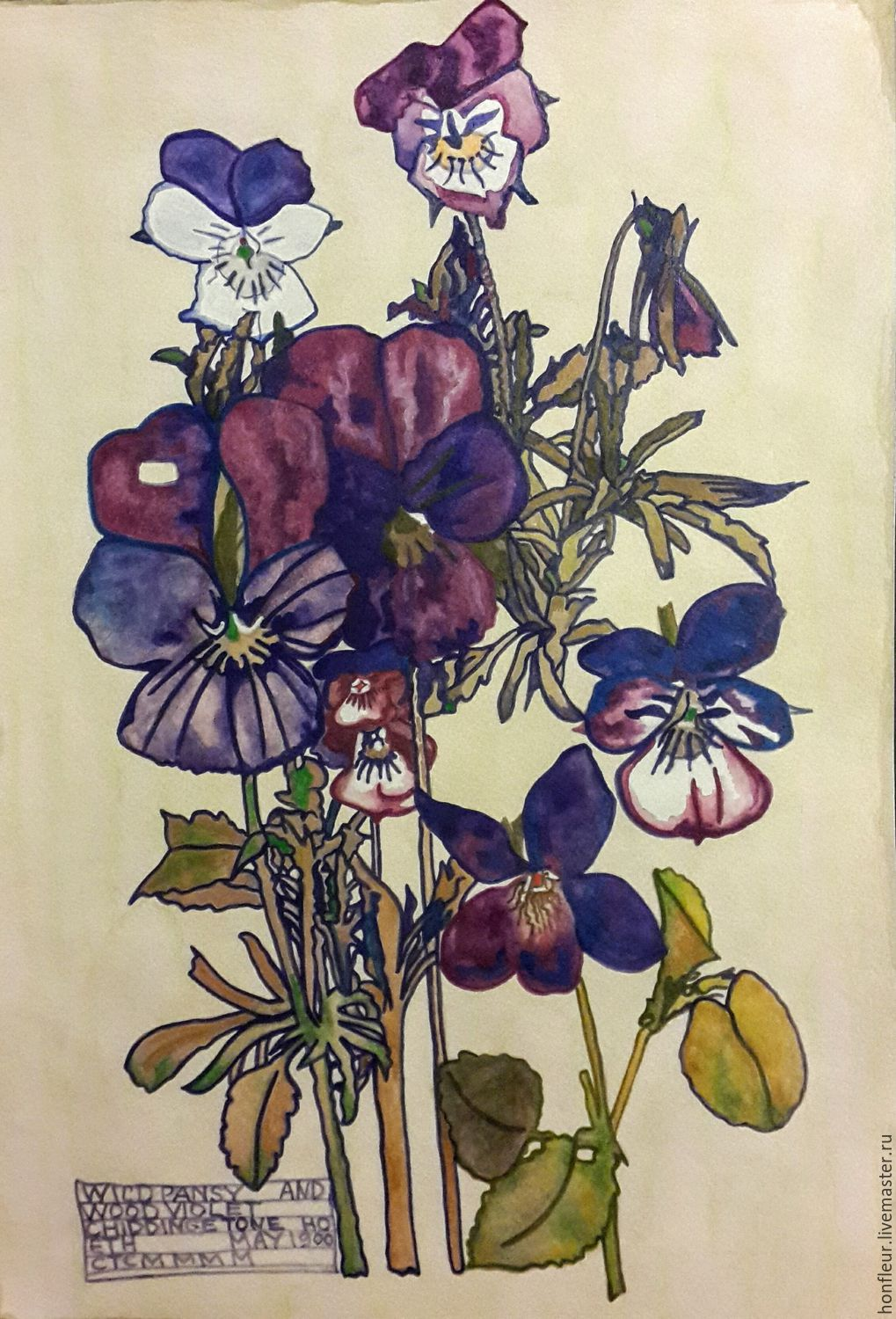 Watercolor herbarium.Charles Rennie Mackintosh, a copy of, Pictures, Moscow,  Фото №1