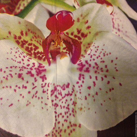Мраморная орхидея - шикарный крупный цветок  Салфетка для декупажа Декупажная радость