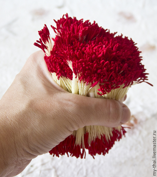 Тычинки. Таиланд. Удлиненные красные головки,желтая нить. My-Thai.  Материалы для флористики из Таиланда.