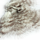 Другие виды рукоделия ручной работы. Перо и пух петуха натуральные, окрашенное №147.. Удивляндия. Интернет-магазин Ярмарка Мастеров.
