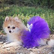 Для домашних животных, ручной работы. Ярмарка Мастеров - ручная работа Юбка-пачка для маленькой собачки. Handmade.