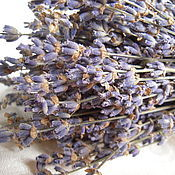 Материалы для творчества handmade. Livemaster - original item Lavender bouquet (the bundle of lavender) aromatherapy, photo shoots, decor. Handmade.