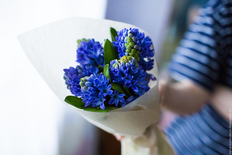 Гиацинты доставка цветов, цветы оптовые