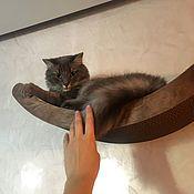 Лежанки ручной работы. Ярмарка Мастеров - ручная работа Малая настенная лежанка-полочка для кошки. Handmade.
