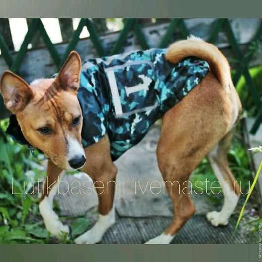 Одежда для собак, ручной работы. Ярмарка Мастеров - ручная работа. Купить Ветровка Лето. Handmade. Ветровка для собаки