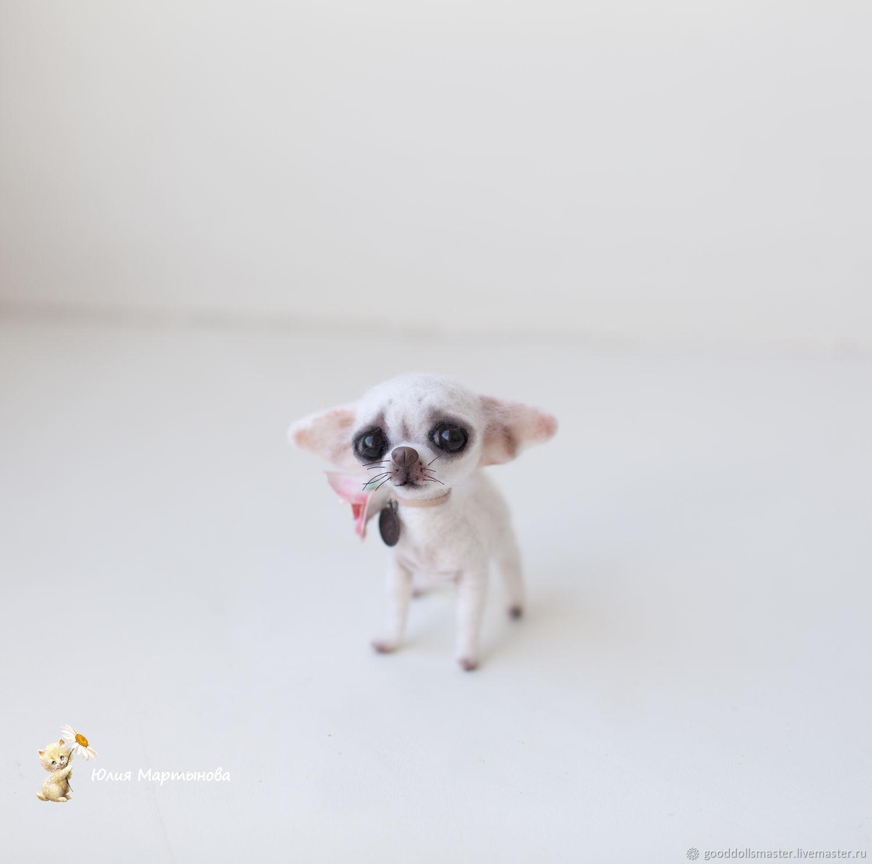 Чихуашка Жасминочка...) миниатюрная девочка..), Игрушки животные, Тольятти, Фото №1