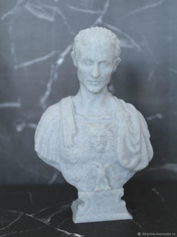 Статуэтка бюст Цезарь из пластика, Статуэтки, Самара,  Фото №1