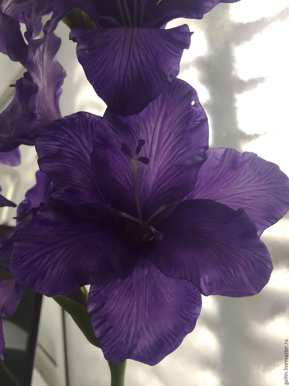 Цветы как гладиолусы только маленькие — photo 9