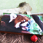 handmade. Livemaster - original item Copernica red Panda - the sweet life. Handmade.