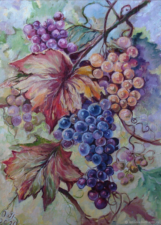 Grapes, Pictures, Nizhny Novgorod,  Фото №1