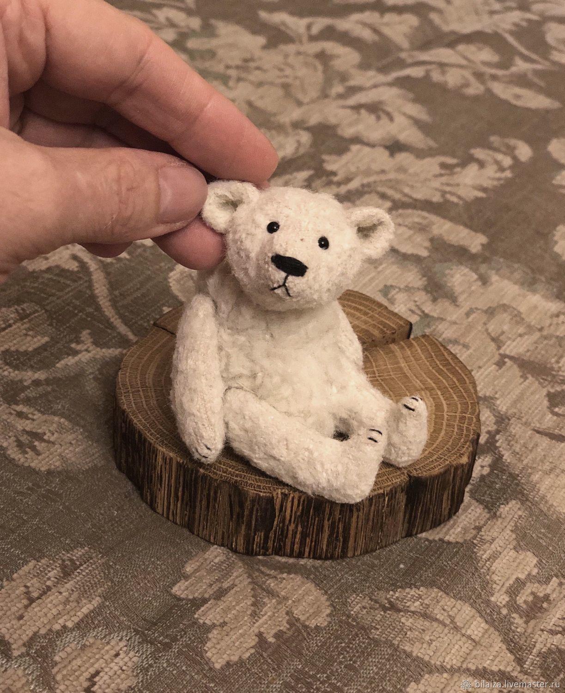 Снежок, Мишки Тедди, Балаково,  Фото №1