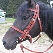 Accessories for Pets handmade. Livemaster - original item Double bridle for Red army horses arr. 1925, with 2 rein, Horse tack. Handmade.