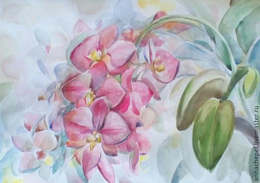 Розовые орхидеи. Анна Чепель. 50 x 33 см., бумага, акварель, 2016. Без рамы. Лист бумаги заполнен сочными цветами розовой орхидеи, расположенными на свисающей ветке.