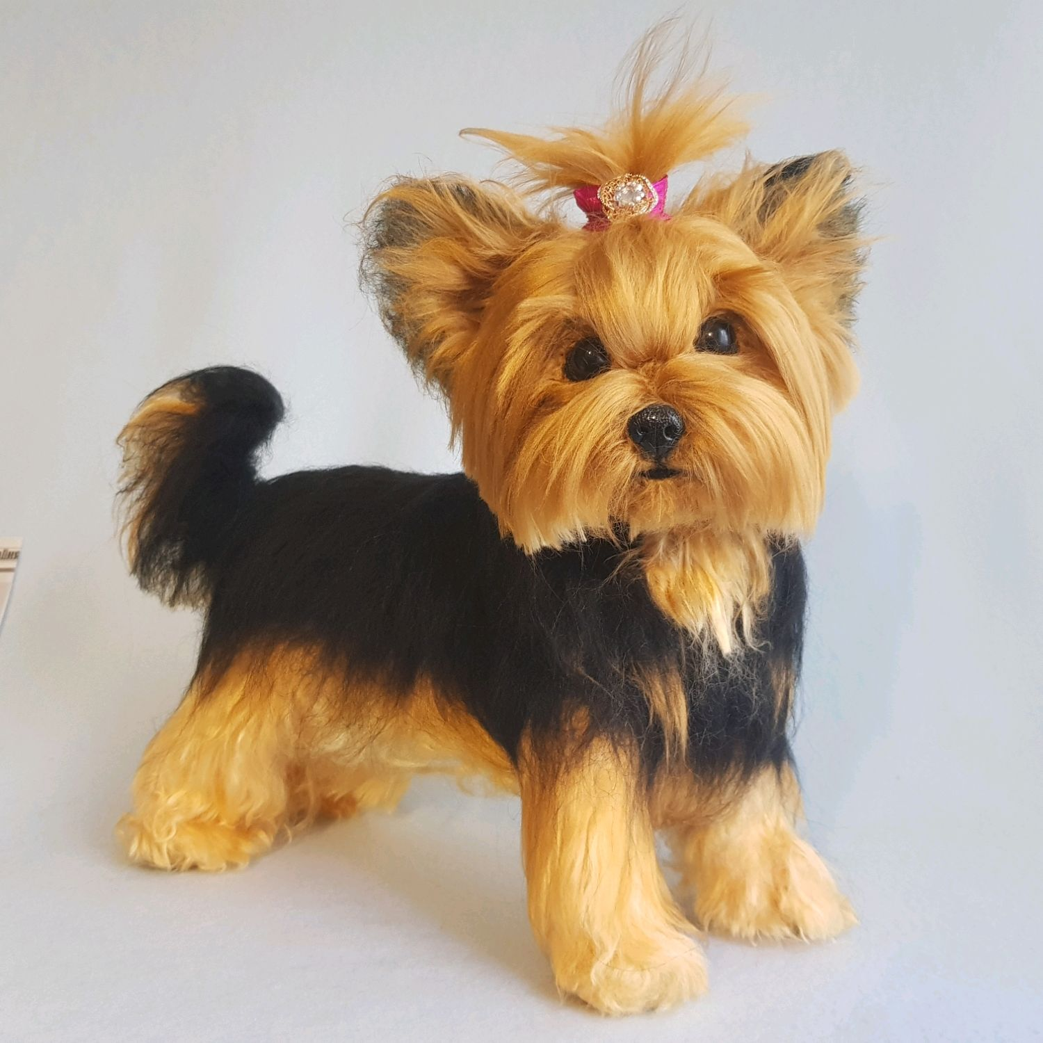 Yorkshire Terrier in the technique of dry felting, Felted Toy, Riga,  Фото №1