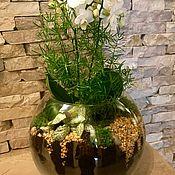 """Цветы и флористика ручной работы. Ярмарка Мастеров - ручная работа Флорариум """"Нежность с орхидеей"""". Handmade."""