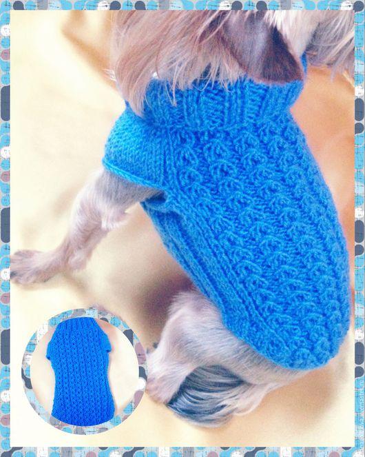 Одежда для собак, ручной работы. Ярмарка Мастеров - ручная работа. Купить Свитер для собак вязаный. Handmade. Синий, вязание