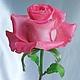 Роза из холодного фарфора. Полностью ручная работа! :)