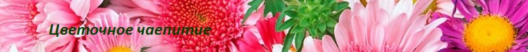 Kirusia (Цветочное чаепитие)